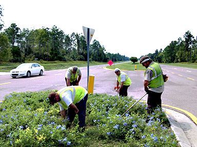Road and Bridge Crew Improving the Median
