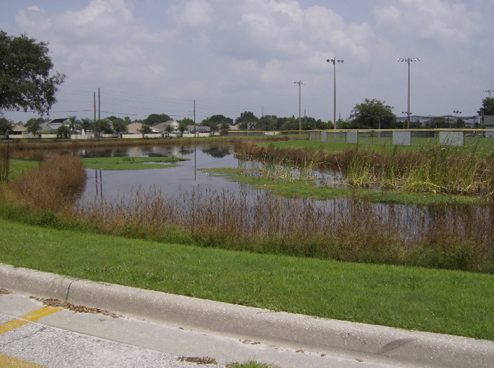 Stormwater Pond Located in Collier Parkway