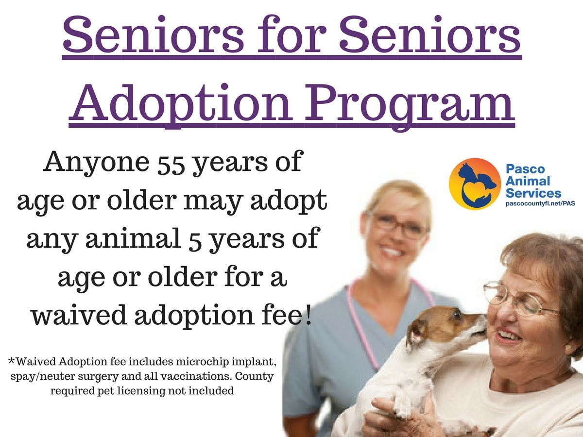 Seniors for Seniors Adoption Program