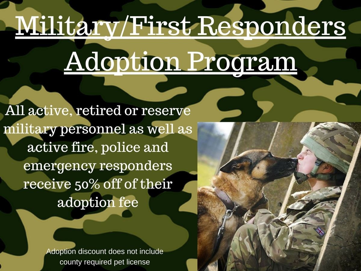 Military Adoption Program