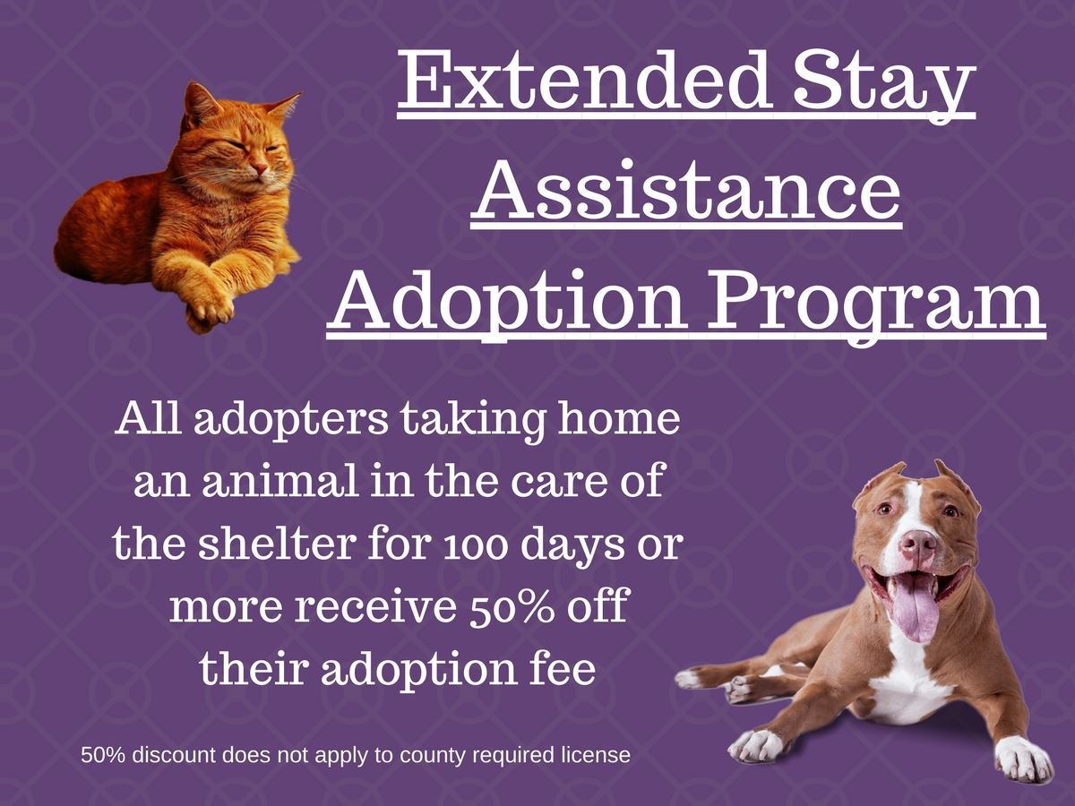 Extended Stay Assistance Adoption Program